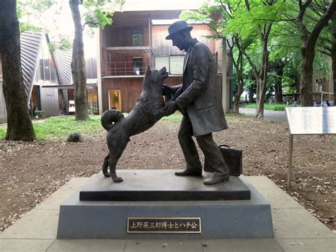 hachi the the heartbreaking story of hachiko the world s most loyal