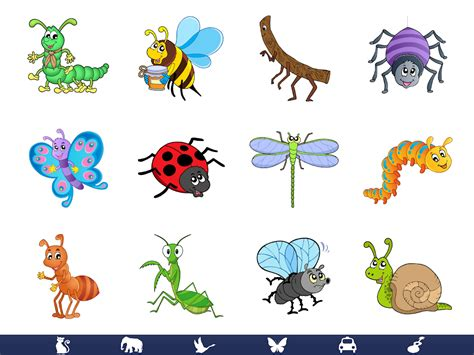 bed bug video video touch bugs insects android apps on google play