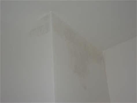 schlafzimmer zu feucht traumhaus stadtvilla baublog andrea tim nasse