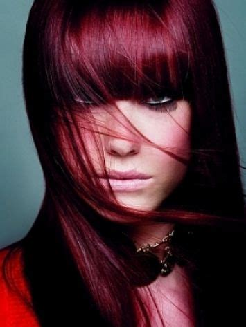 black cherry red hair dyes 1000 images about hairy on pinterest purple highlights