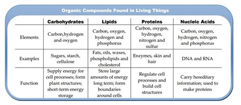 carbohydrates which one of the following characteristics topic 2 molecular biology lowes ib