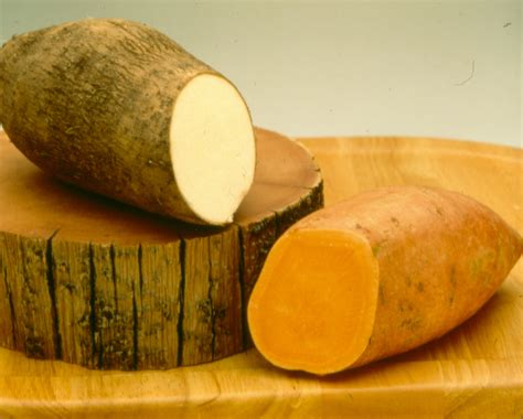 what color are sweet potatoes what is the difference between a sweet potato and a yam