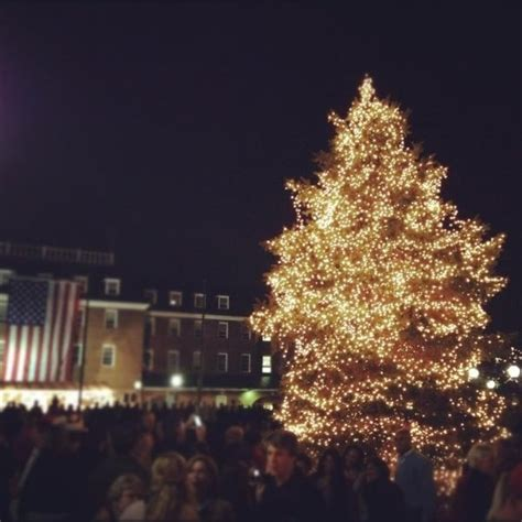 old town alexandria christmas tree in market square
