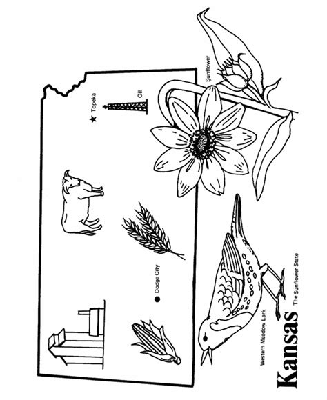 K State Coloring Pages by Usa Printables State Outline Shape And Demographic Map