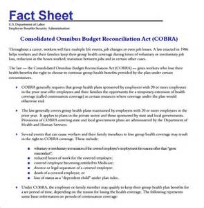 Blank Fact Sheet Template by Fact Sheet Template 12 Documents In Pdf Word