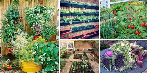 how to plan a vegetable garden vegetable garden plan the gardening garden design garden