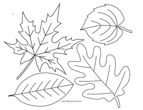 We Re Going On A Leaf Hunt Follow Up Activities Fall Leaves Coloring Pages