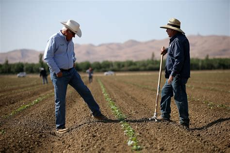 the farmer s it s only getting worse california farmers consider historic cuts here now