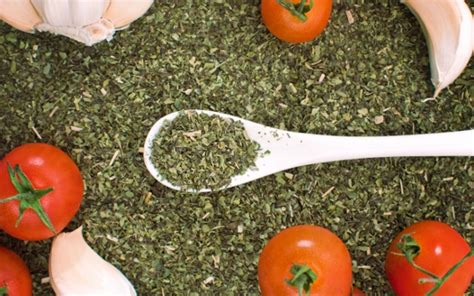 Oregano During A Thc Detox by Could Oregano Replace Antibiotics In Livestock Treatment