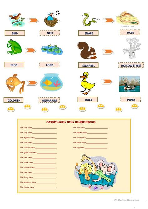 Worksheet Animals And Their Homes