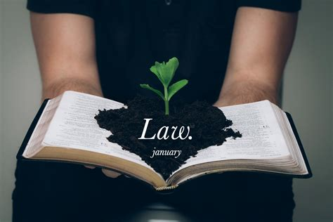 in law law through the old testament las
