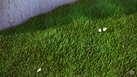 blender tutorial grass blender grass by koolean999 on deviantart