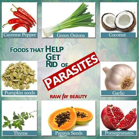foods that help get rid of parasites did you