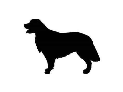 Dachshund Home Decor by Quiz Can You Identify The Dog Breed By Its Silhouette