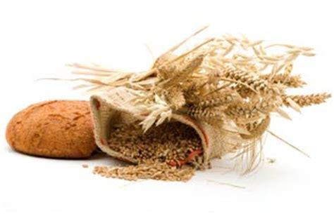 alimenti ricchi di cellulosa la fibra alimentare benessere integrale nutrizionechiara