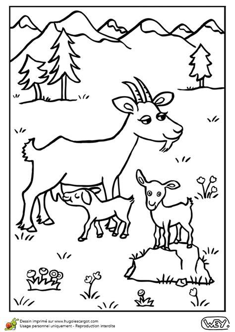 Dessin 224 Colorier D Une Maman Ch 232 Vre Et De Ses Petits Coloriage Animaux A Imprimer Coloriage De Hamster Mignon L