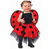 Baby Lady Bug Toddler Costume  Mr Costumes