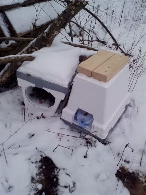 outdoor cat house for winter 25 best ideas about outside cat house on pinterest
