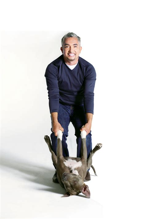 cesar millan s a q a with whisperer cesar millan who s coming to gallagher bluedorn
