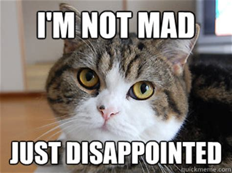 Not Mad Meme - i m not mad just disappointed judgment cat quickmeme