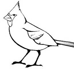cardinal coloring page stl fred bird coloring page coloring pages
