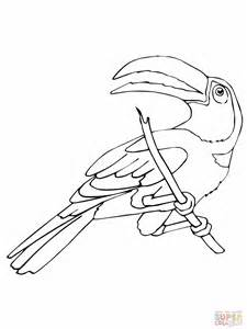 tucan colouring pages 2