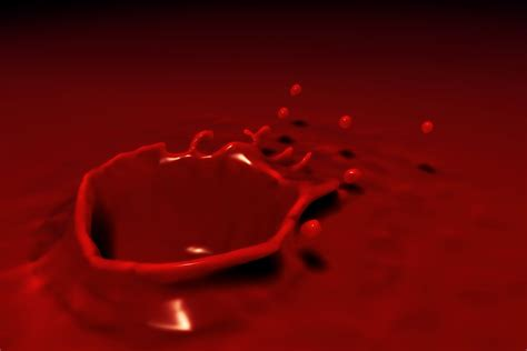 imagenes asquerosas de sangre 191 qu 233 significa so 241 ar con sangre sue 241 o significado youtube