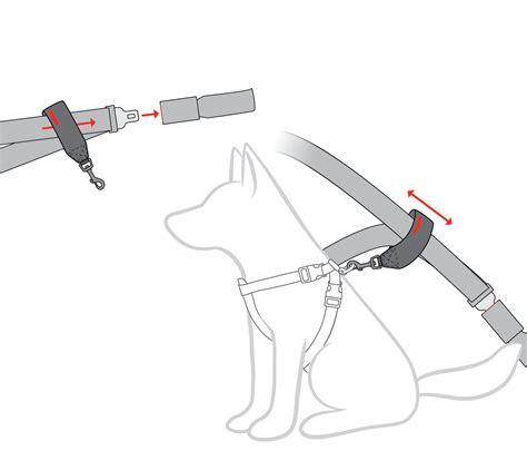 car restraint car restraint seat belt travel