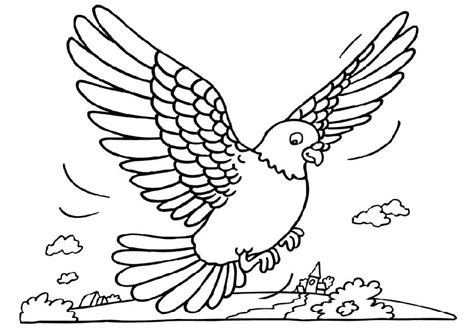 Pigeon Coloring Page pigeon coloring pages coloringpages1001
