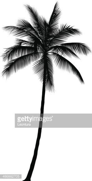 coconut tree tattoo designs collection of 25 palm tree