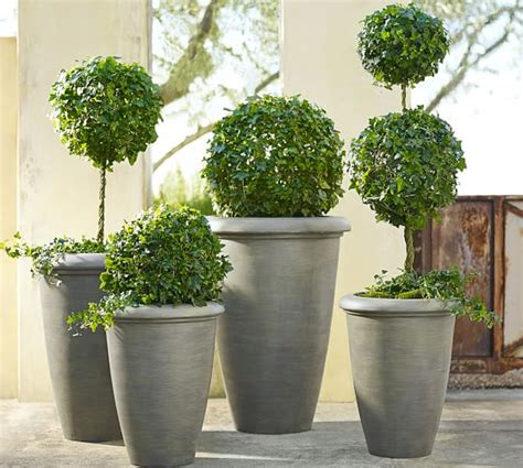 Pottery Barn Planters by Exbury Planters Pottery Barn