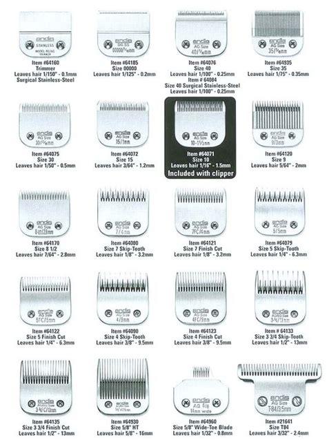 clipper sizes men pics male hair lengths pictures clipper sizes mens short
