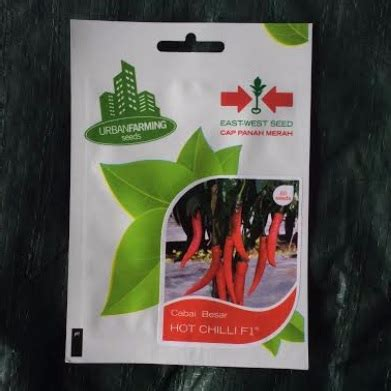 Benih Cabai Merah Besar benih panah merah cabai chilli f1 50 biji jual