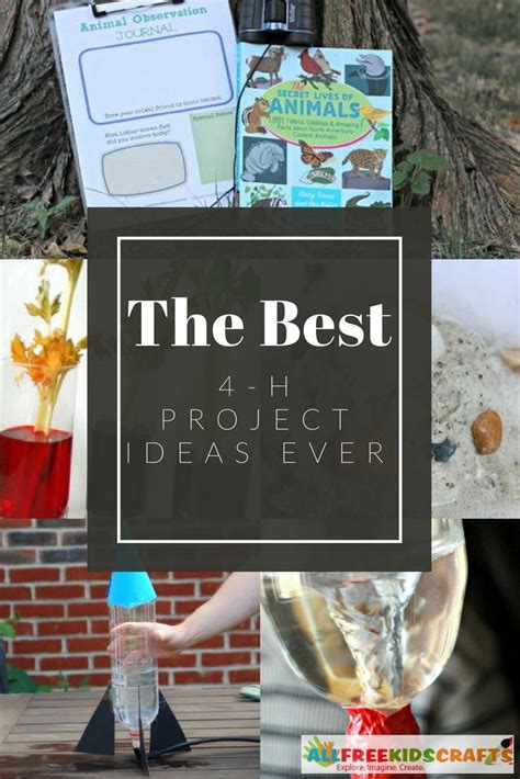 4 h craft project ideas 89 best images about learning activities for on