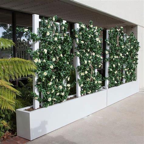 grigliati da giardino separ 232 da giardino recinzioni tipi di separ 232 per esterni