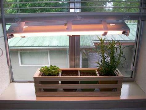 indoor light garden indoor herb garden with rosemary kris allen daily