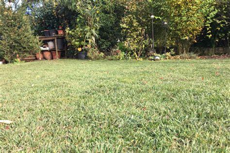 Rasen Im Herbst Vertikutieren by Rasen Pflege Im Herbst Das Ist Vor Dem Winter Zu Tun