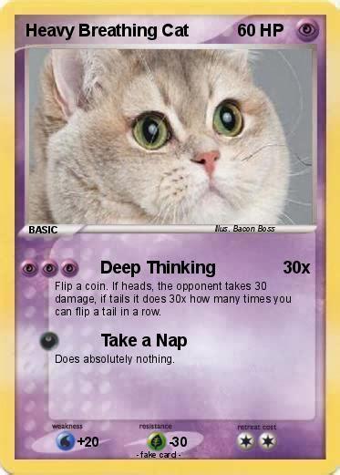 Breathing Heavily Cat Meme - heavy breathing cat google search cat memes