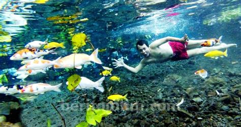 tempat wisata  penanggal lumajang tempat wisata indonesia