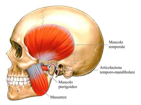 dolore alla della testa dolore alla mandibola destra o sinistra