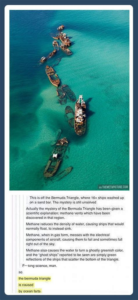 the mystery of bermuda triangle is solved now revoseek angry torro the mystery of the bermuda triangle is