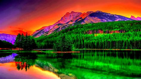 most beautiful size hd wallpapers www hdwallpapery nature page 3