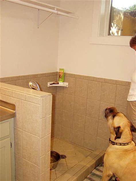 puppy shower shower eclectic basement salt lake city by renovation design
