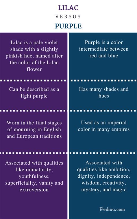 the color purple similarities between book and difference between lilac and purple definition shades