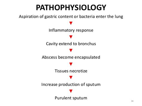 pathophysiology of pneumonia diagram pneumonia kullabs