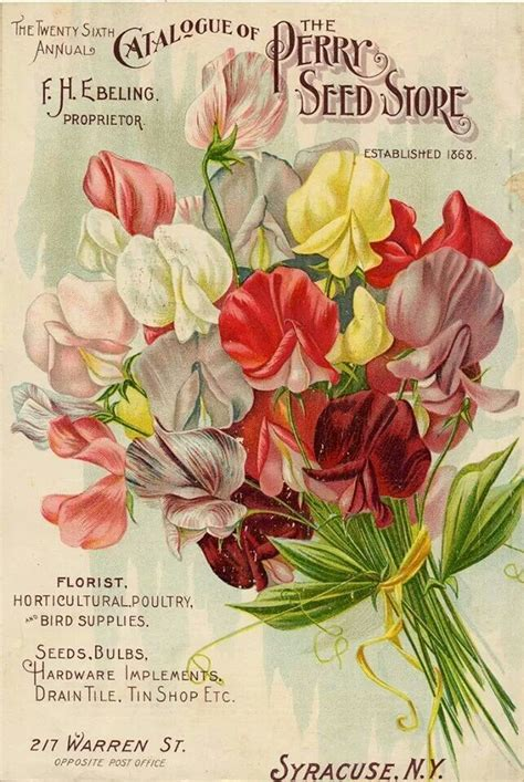 Flower Garden Catalogs Discover And Save Creative Ideas