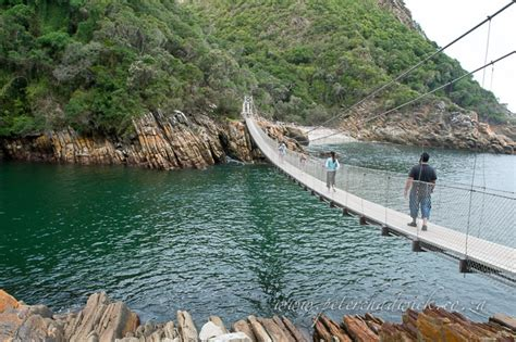 swinging south africa garden route port elizabeth to mossel bay holiday bug
