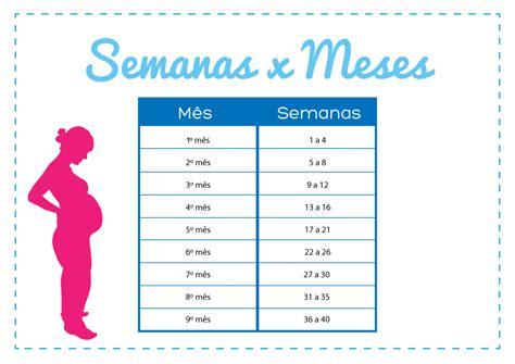 Calendario Gestacional Como Contar A Gravidez Em Semanas E Meses Gravidadicas