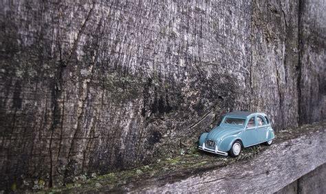 car with tree image photo gratuite voiture retour vieux volkswagen image gratuite sur pixabay 1768794