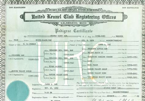 American Houndsmen   1965 UKC Pedigree Certificate